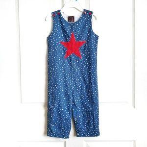 Lil Cactus Boy Navy Americana Star Shortalls